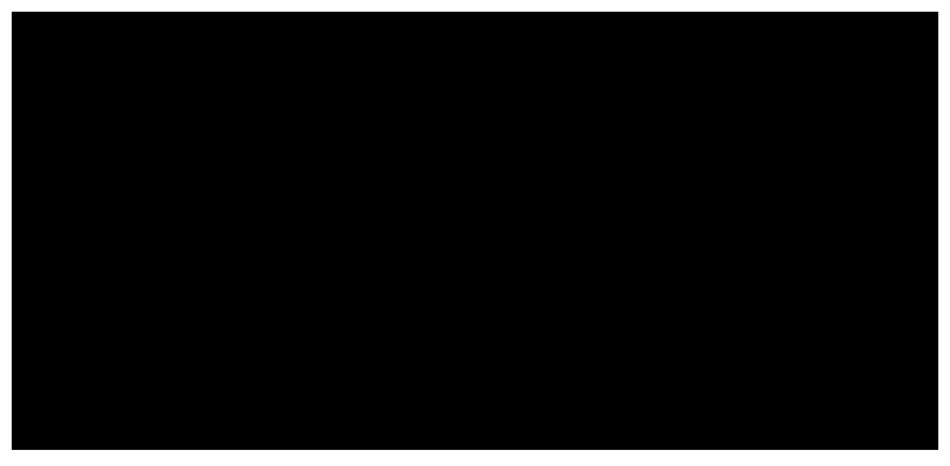 ari foundation logo black